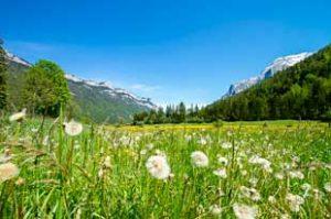 Waidring in Tirol